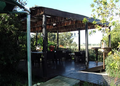 Wooden decks with pergolas finished with bluegum latte